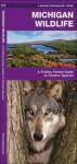 Michigan Wildlife: A Folding Pocket Guide to Familiar Species - James Kavanagh, Raymond Leung