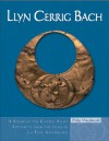 Llyn Cerrig Bach: A study of the Copper Alloy Artefacts from the Insular La Tene Assemblage - Philip MacDonald, Kilian Anheuser, Tony Daly
