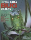 The Big Bug Book: Discover the Amazing World of Beetles, Bugs, Butterflies, Moths, Insects and Spiders - Barbara Taylor, Jen Green, John Farndon