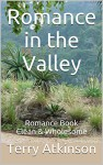Romance in the Valley: Romance Book Clean & Wholesome - Terry Atkinson