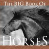 The Big Book of Horses - J.C. Suares