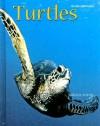 Turtles - Rebecca Stefoff