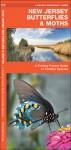 New Jersey Butterflies & Moths: A Folding Pocket Guide to Familiar Species - James Kavanagh, Raymond Leung, James Kavanagh