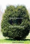 Half an Hour a Day Across Massachusetts - John Galluzzo
