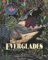 The Everglades - Wayne Lynch