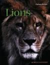 Lions - Rebecca Stefoff