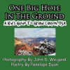 One Big Hole in the Ground, a Kid's Guide to Grand Canyon, USA - Penelope Dyan, John D. Weigand