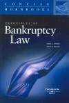 Principles of Bankruptcy Law (Concise Hornbook) (Concise Hornbooks) - David G. Epstein, Steve H. Nickles