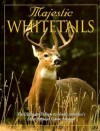 Majestic Whitetails - Michael Dregni