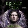 Dark Skye: Immortals After Dark, Book 15 - Kresley Cole, Robert Petkoff, Simon & Schuster Audio