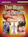 The Brain and Nerves - Christine Webster