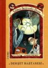 Dehşet Hastanesi (Talihsiz Serüvenler Dizisi, #8) - Brett Helquist, Lemony Snicket