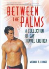 Between The Palms: A Collection Of Gay Travel Erotica - Michael T. Luongo