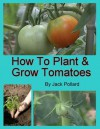 How to Plant and Grow Tomatoes - Jack Pollard