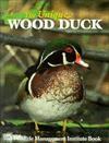 The Unique Wood Duck - Richard E. McCabe