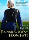 AMISH ROMANCE: Running Away From Fate(Sweet Inspirational Amish Christian Pregnancy Romance) (Second Chance Wedding Baby Short Stories) - Angela Taylor
