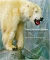 Nanoq: Flat Out and Bluesome: a Cultural Life of Polar Bears - Bryndís Snæbjörnsdóttir, Mark Wilson