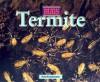 Termites (Bugs) - Kris Hirschmann