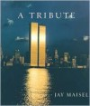 A tribute - Jay Maisel
