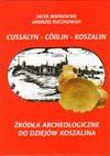 Cussalyn - Cosslin - Koszalin. Źródła archeologiczne do dziejów Koszalina - Jacek Borkowski, Andrzej Kuczkowski