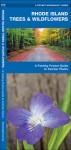 Rhode Island Trees & Wildflowers: A Folding Pocket Guide to Familiar Species - James Kavanagh
