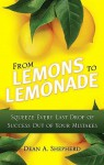 From Lemons to Lemonade: Squeeze Every Last Drop of Success Out of Your Mistakes - Dean A. Shepherd