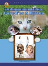 Care for a Kitten (A Robbie Reader) (How to Convince Your Parents You Can...) - Stephanie Bearce