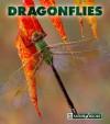 Dragonflies - Patrick Merrick