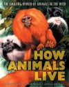 How Animals Live: Amazing World of Animals in the Wild, The - E. Bertram, Bernard Stonehouse, John Francis, B. Stonehouse