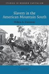 Slavery in the American Mountain South - Wilma A. Dunaway