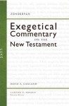 Luke (Zondervan Exegetical Commentary on the New Testament) - David E. Garland, Clinton E. Arnold