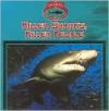 Killer Sharks, Killer People - Victor Gentle, Janet Perry