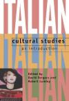 Italian Cultural Studies: An Introduction - David Forgacs, Robert Lumley