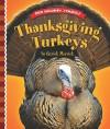 Thanksgiving Turkeys - Patrick Merrick