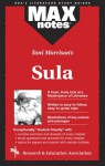 Sula (MAXNotes Literature Guides) - Anita Price Davis, English Literature Study Guides