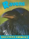 Ravens - Christine Webster