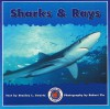 Sharks & Rays - Stanley L. Swartz, Robert Yin