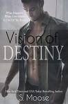 Vision of Destiny (Infinity Book 2) - S. Moose, B.Z. Hercules, K. Keeton, Golden Czermak