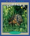 Turtles - Trudi Trueit