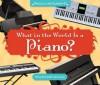 What in the World Is a Piano? - Mary Elizabeth Salzmann, Diane Craig