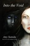 Into the Void (Godhunter #10) - Amy Sumida