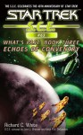 Star Trek: Echoes of Coventry (Star Trek: Starfleet Corps of Engineers) - Richard C. White