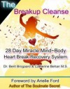 The Breakup Cleanse: 28 Day Miracle Mind~Body Heart Break Recovery System - Catherine Behan, Berit Brogaard