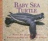 Baby Sea Turtle - Aubrey Lang, Wayne Lynch