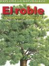 Roble/oak Tree: Por Dentro Y Por Fuera / Inside And Out (Explora La Naturaleza) - Andrew Hipp, Fiammetta Dogi, Tomás González