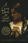 Curse Dark as Gold - Elizabeth C. Bunce