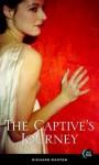 The Captive's Journey - Richard Manton