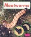 Mealworms - Martha E.H. Rustad
