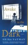 Awake in the Dark: Stories - Shira Nayman