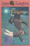 The Fledgling - Jane Langton, Mary Beth Hurt